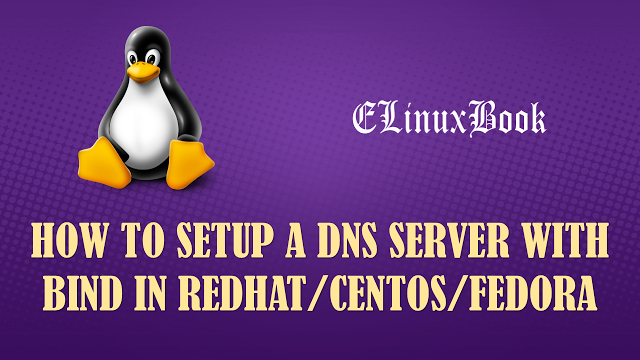 Setup Master DNS Server/Primary DNS Server with BIND in Linux