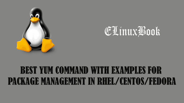 yum command with examples a Package Manager