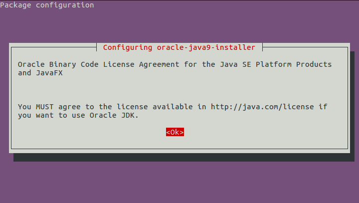Installing Oracle Java (Java JDK)